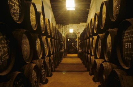 Gonzalez Byass barrel room