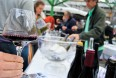 The Natural Wine Fair in London in May