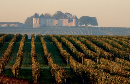 joy of terroir, terroir,