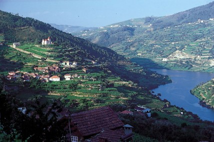 Symington acquires Douro vineyard after 100-year wait