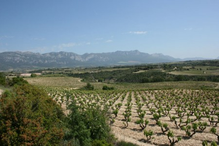 Rioja