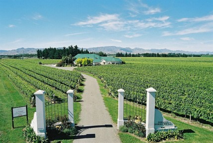 Domaine Georges New Zealand