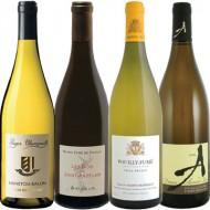 sancerre alternatives,