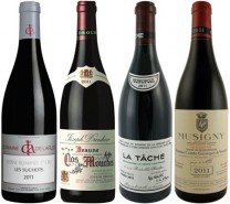 Red Burgundy 2011: vintage preview